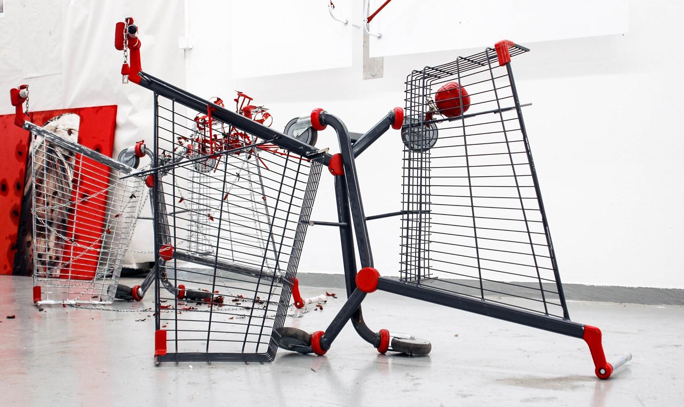 Kropotkin had a dream,installation view